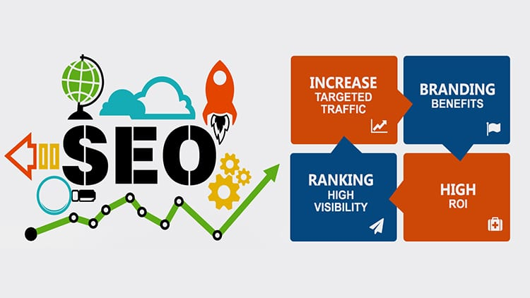 Why You Need An Expert SEO Assistance Now For Robust ROI?